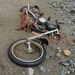 Harley został znaleziony na kanadyjskim wybrzeżu rok po fali tsunami