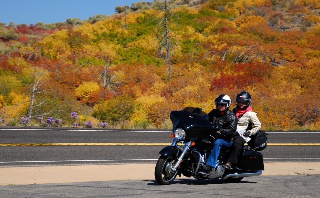 Harley-Davidson Street Glide. Gigantyczne 134 Nm obrotu czuć podczas podróży