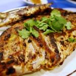 Świeże ryby to prawdziwe złoto Adriatyku