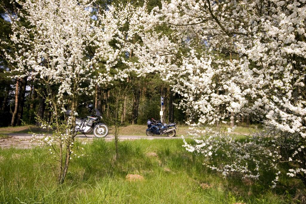 Suwalszczyzna wiosną jest wspaniała