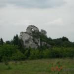 Północna Jura (63)