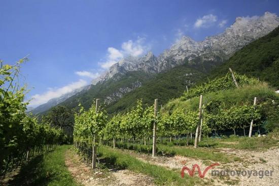 Trento-Alto Adige (17)