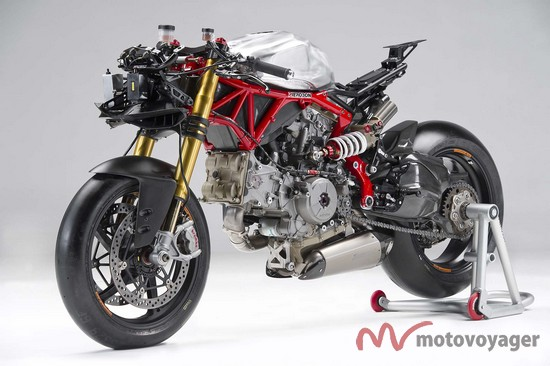 Panigale Naked (10)
