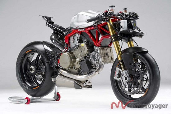Panigale Naked (11)