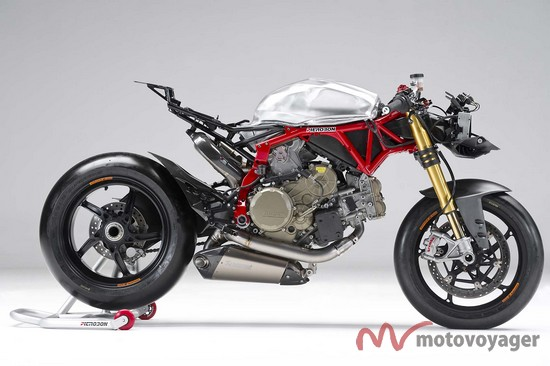 Panigale Naked (12)