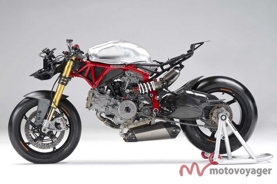 Panigale Naked (14)
