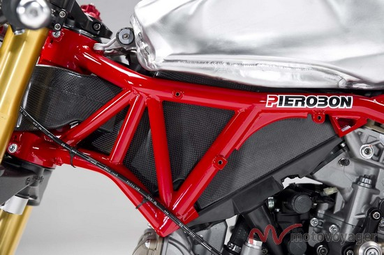 Panigale Naked (18)