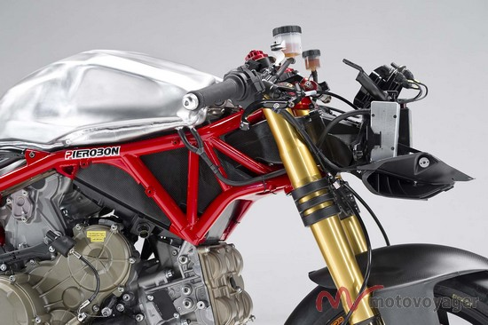 Panigale Naked (2)