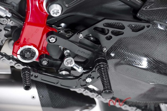 Panigale Naked (4)