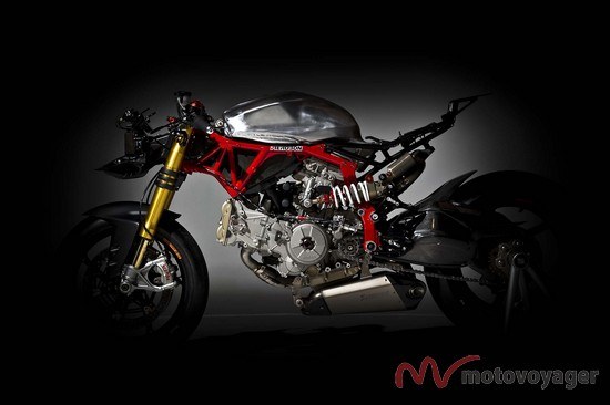 Panigale Naked (6)
