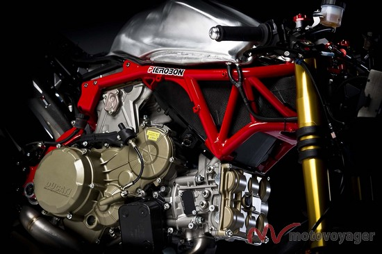 Panigale Naked (8)