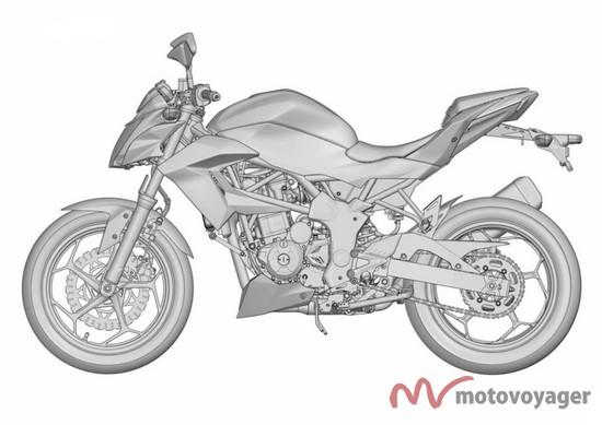 Ninja 250 RR Mono (1)