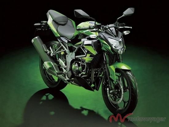 Kawasaki Z250SL (8)
