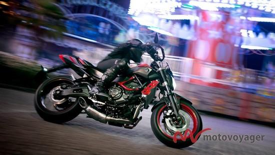 MT-07 Moto Cage (1)