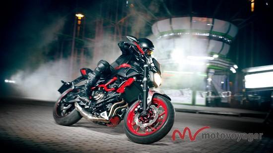 MT-07 Moto Cage (5)