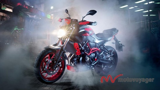 MT-07 Moto Cage (6)