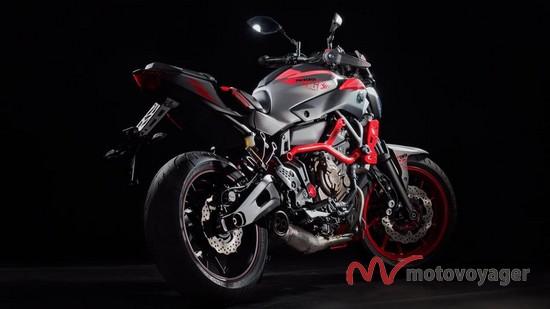 MT-07 Moto Cage (8)