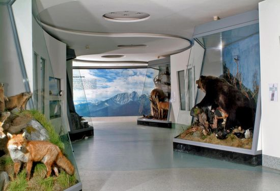 Z_wizyta_w_Muzeum