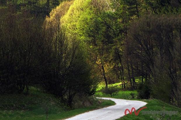 Park Narodowy Gór Bukowych (1)