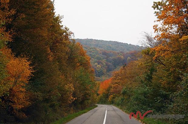 Park Narodowy Gór Bukowych (3)