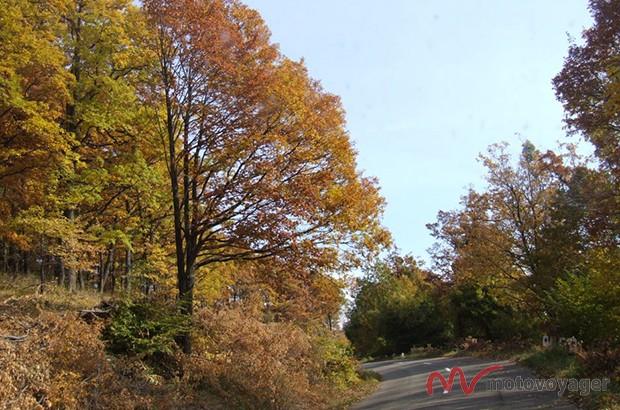 Park Narodowy Gór Bukowych (5)