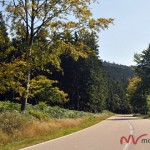 Schwarzwaldhochtrasse(7)