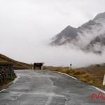 Przełęcz Gavia (11)