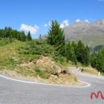 Przełęcz Gavia (12)