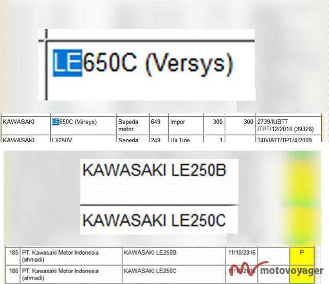 Kawasaki Versys 250(2)