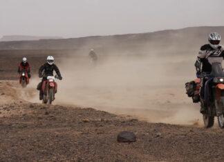 owcy Niewygód Oversize  Maroko