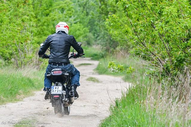 Benelli Leoncino Trail 500